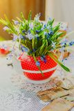 Beautiful early spring flowers,scilla siberica, in red teapot on white table. Beautiful early spring flowers, scilla siberica, in red teapot on white table Royalty Free Stock Photo