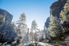 Early spring in Yosemite. Beautiful early spring landscapes in Yosemite National Park, Yosemite, USA stock photos