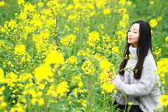 At beautiful early spring, a young woman stand in the middle of yellow rape flowers filed which is the biggest in Shanghai. A young woman stand in the middle of Royalty Free Stock Photo