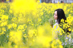 At beautiful early spring, a young woman stand in the middle of yellow rape flowers filed which is the biggest in Shanghai. A young woman stand in the middle of Royalty Free Stock Photography