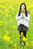 At beautiful early spring, a young woman stand in the middle of yellow rape flowers filed which is the biggest in Shanghai Royalty Free Stock Photography