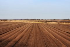 Beautiful earth. Tractor handles Latvia`s black land for planting Stock Photography