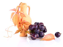 Beautiful earthenware amphora with the vine twig and grape Stock Photography