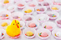 Beautiful Easter background with chocolate Easter eggs in pastel Royalty Free Stock Image