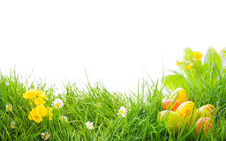 Beautiful easter border Royalty Free Stock Image