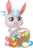 Beautiful Easter Bunny Stock Photo