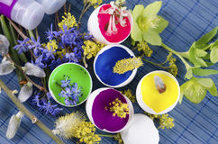 Beautiful Easter decoration with egg shells with paints and spring flowers stock photos