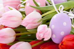 Beautiful easter egg decoration colorfull eggs seasonal pastel Royalty Free Stock Photography