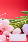 Beautiful easter egg decoration colorfull eggs seasonal pastel Stock Photos