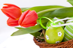 Beautiful easter egg decoration colorfull eggs Royalty Free Stock Photography