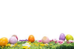 Beautiful Easter eggs on a flowering meadow Royalty Free Stock Photo