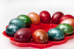 A beautiful Easter eggs in a plastic holder Stock Photography