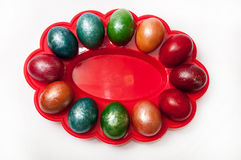 A beautiful Easter eggs in a plastic holder Stock Photos