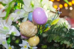 Beautiful Easter flowers with colored and straw eggs with bokeh background - purple and pink and yellow and green stock photos
