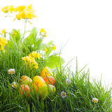 Beautiful easter meadow Royalty Free Stock Photo