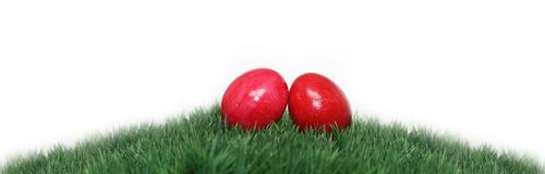 Beautiful Easter motive Royalty Free Stock Image