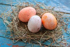 Beautiful Easter multi color egg in straw on wooden background, Easter day concept.  royalty free stock image