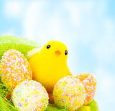 Easter still life outdoors Stock Photos