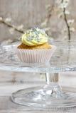 Beautiful edelweiss cupcake Stock Photography