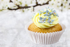 Beautiful edelweiss cupcake Royalty Free Stock Photography