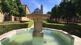 Beautiful el Salvador Chapel in Ubeda, Spain, reflected on the fountain water, surrounded by orange trees, Spain stock video