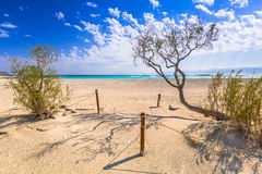 Beautiful Elafonissi beach on Crete. Greece Royalty Free Stock Photos