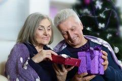 Beautiful elderly couple Royalty Free Stock Photography