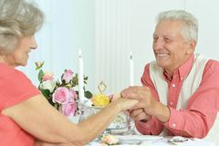 Beautiful elderly couple Royalty Free Stock Photography