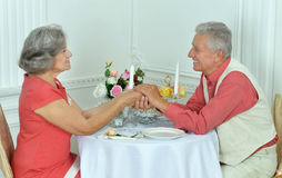 Beautiful elderly couple Royalty Free Stock Image