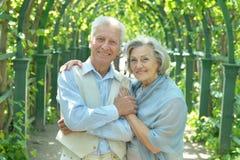 Beautiful elderly couple. Portrait of beautiful elderly couple outdoor in summer park Royalty Free Stock Image
