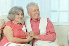 Beautiful elderly couple Stock Images