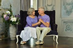 Beautiful elderly couple Royalty Free Stock Photo