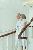 Beautiful elderly couple on stairs Royalty Free Stock Image