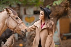 Beautiful elegance woman stroking a horse outdoors. Royalty Free Stock Image