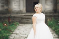 Beautiful elegant bride with perfect wedding dress and bouquet posing near old castle.  Stock Photo