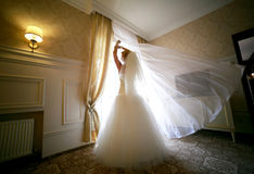 Beautiful and elegant a bride standing near a window. Wedding concept feelings and emotions. Beautiful and elegant a bride standing near a window Stock Photo