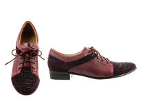 Beautiful and elegant female shoes. Stock Images