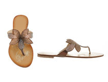 Beautiful and elegant female slippers. Royalty Free Stock Photography