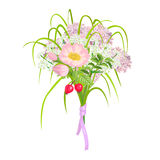 Beautiful and elegant Pink Flowers isolated on white background Stock Images