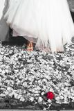 beautiful elegant shoes for the most beautiful dress of the bride, with flowers and red rose stock images