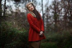 Beautiful elegant woman Royalty Free Stock Image