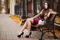 Beautiful elegant woman. autumn Stock Photos