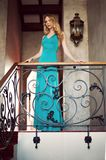 Beautiful elegant woman in a long green dress Stock Photography