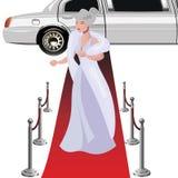 Beautiful elegant woman on the red carpet royalty free illustration