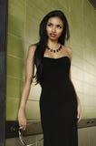 Beautiful elegant woman Royalty Free Stock Images