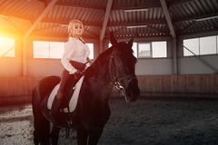 Beautiful elegant young blonde girl sits on a her black horse dressing uniform competition white blouse shirt and brown pants. Stock Images