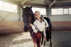 Beautiful elegant young blonde girl standing near her horse dressing uniform competition. Beautiful elegant young blonde girl standing near her black horse Royalty Free Stock Photography