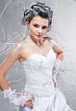 Beautiful elegant young bride Stock Image
