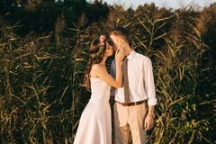 Beautiful elegant young romantic wedding couple kissing. In park royalty free stock photos