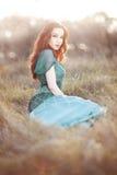 Beautiful, elegant young woman stock photo